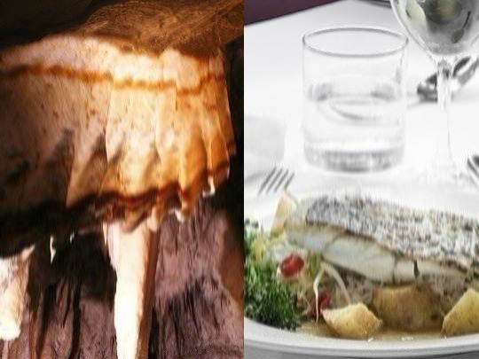 Enjoy leisurely lunch in historic Chisolm's Restaurant (WEEKENDS ONLY). Also, if you are of average fitness, you can experience a fascinating cave tour, as part of a small, exclusive group.