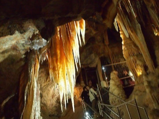 For energetic night owls, who enjoy walking and climbing stairs, the Extended Orient is an exciting and adventurous tour which takes you through three of our most spectacular caves, focusing mainly on the Orient.